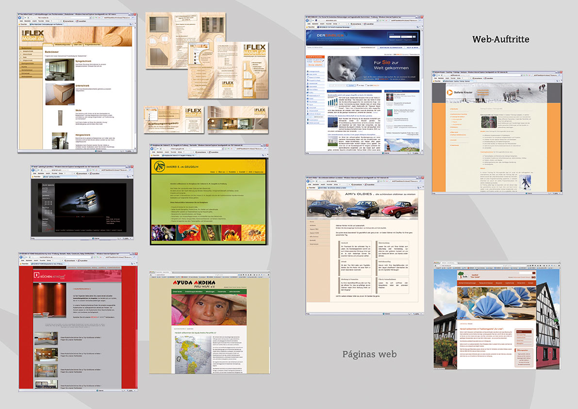 Web-Auftritte & Flyers.